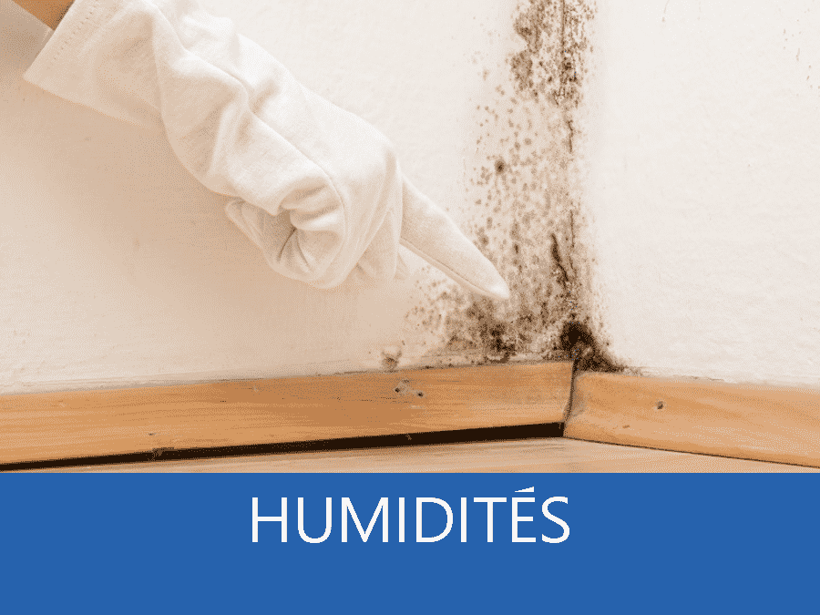 expertise humidité 57, expert humidité Metz, cause moisissure Thionville, solutions humidité Moselle,